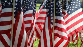 American Flag Decorations stock video