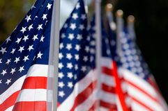 American Flag Display in honor of Veterans Day stock images
