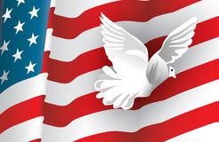 American Flag and a Dove. A dove flying across the flag of the United States as it flutters in the wind vector illustration