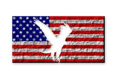 American Flag And Eagle Royalty Free Stock Photo