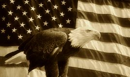 American Flag Eagle Sepia Background Royalty Free Stock Photos