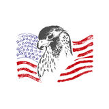 American flag and eagle, sketch, vector illustration Royalty Free Stock Image