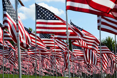 American flag field. Field of American Flags Stock Images