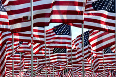 American flag field. Field of American Flags Royalty Free Stock Photography
