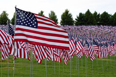 American flag field. Field of American Flags Royalty Free Stock Photos