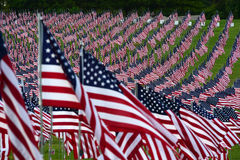 American flag field. Field of American Flags Royalty Free Stock Photo