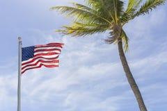 The American flag flies high alongside a coconut palm tree. stock photo