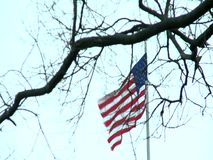 An American flag flowing in the wind stock footage