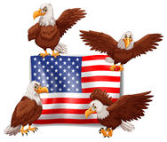 American flag and four eagles Stock Images
