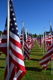 American Flag Heroism Flies Field Of Honor. Hundreds of American flags fly in the Field Of Honor, as a patriotic tribute to the strength and unity of Americans Royalty Free Stock Image