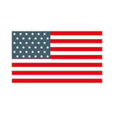 American flag icon. Cute american flag icon cartoon vector graphic design Royalty Free Stock Image