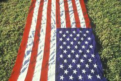 American Flag Laid Out on Green Lawn, United States Stock Photos