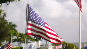 American flag at Military Memorial Cemetery stock video footage