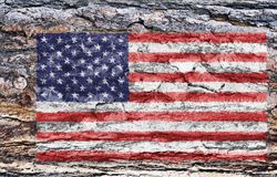 American flag painted on tree back Royalty Free Stock Photo
