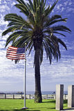 American Flag and Palm Tree. American Flag waves against palm tree at memorial overlooking ocean Royalty Free Stock Photo