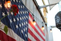American Flag with Red Flower Stock Photos