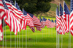 American Flag Rows Royalty Free Stock Photo
