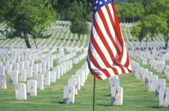 American Flag and Rows of Gravestones, Los Angeles, California Royalty Free Stock Photography