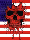 American flag skull Stock Photography