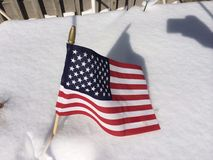 American flag in snow. A winter scene of an American flag, in the winter snow of a backyard garden Royalty Free Stock Image