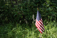 American flag in sunlight Royalty Free Stock Photo