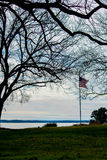 AMERICAN FLAG IN TREE LIMBS. A VIEW OF RIVER WITH FLAGPOLE AND AMERICAN FLAG AND BARREN TREE LIMBS Royalty Free Stock Photography