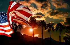 American flag at palm tree silhouette on a background of tropical sunset. American flag at tropical sunset of palm tree silhouette on a background, independence royalty free stock photos
