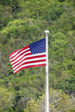American Flag in Tropics Stock Images
