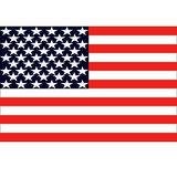 American flag vector illustration Stock Photography