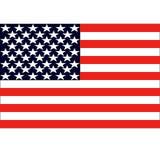 American flag vector illustration Stock Photography