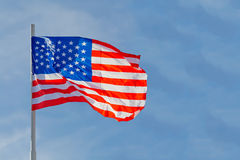 American flag. Is waving in front of blue sky Stock Photos