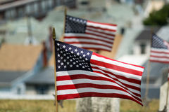 American Flag Waving Stock Image