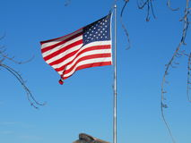 American flag against blue skies. American flag flying against blue skies on sunny day with bare tree branches Stock Photos