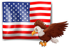 American flag and wild eagle Royalty Free Stock Photos