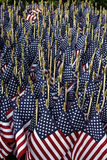 American flags. Aerial view of large group of American flags receding into distance Stock Image