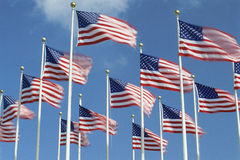 American Flags. Flying in the wind, Washington, D.C Royalty Free Stock Photos