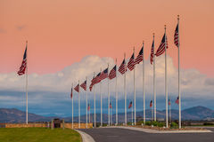 American Flags. Precisely Aligned at Attention with Pink Sky in Background Royalty Free Stock Photos
