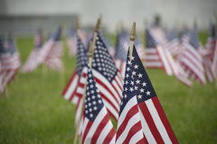 American Flags. Flying as a remembrance to military personnel stock images