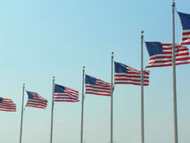 American Flags. Several large american flags in a row Royalty Free Stock Image
