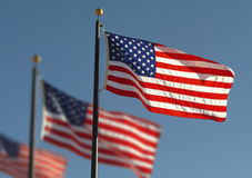 American flags. Several American Flags on poles Royalty Free Stock Images