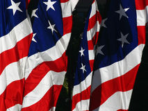 American Flags royalty free stock image
