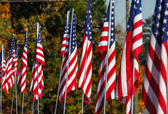 American Flags in Autumn Stock Photos