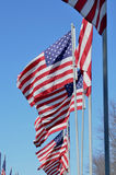 American flags blowing in wind Stock Photos
