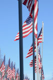 American flags blowing in wind Royalty Free Stock Images