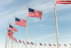 American flags on the blue sky. In Washington DC Royalty Free Stock Photo