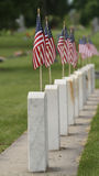 American Flags at Cemetery Vertical Stock Photography