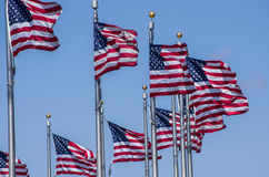 American Flags Cluster Stock Images