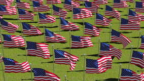 American flags on display for Memorial Day Stock Images