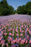 20,000 American Flags. Are displayed for every resident of Massachusetts who died in a war over the past 100 years, Boston Common, Boston, MA, Memorial Day Stock Photography