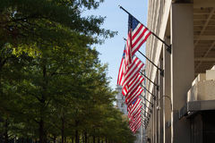 American Flags stock images